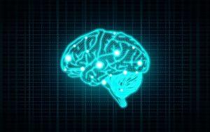 Conceito de Inteligência com Cérebro Humano em Fundo Azul